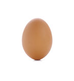 One eggs isolated on white background Royalty Free Stock Photography