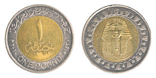 One Egyptian pound coin Stock Images