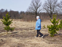 One elderly woman  in the woods in spring Royalty Free Stock Images