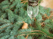 One empty glass of champagne and the cork is on the background of fir branches, Christmas background stock images