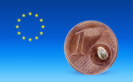 One euro cent and one hemp seed on it Stock Photos