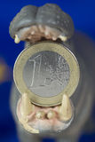 One Euro coin in mouth of hippo figurine Stock Images