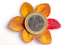 One euro coin with use marks placed on top of wilted small leaves isolated royalty free stock photography