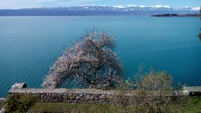 Lake Okhrid, view from the Church of St. John at Kaneo stock photography