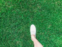 One feet in white sneakers on the grass. Outdoor Royalty Free Stock Images