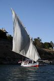One Felucca sailing in Nile river - Egypt. One Felucca sailing next to Elephantine island in Nile river in Aswan city of upper Egypt Royalty Free Stock Photos