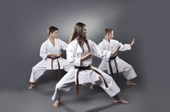 One female and two male brown belt karate doing kata Royalty Free Stock Photography