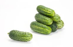 One and a few green cucumbers Royalty Free Stock Photography