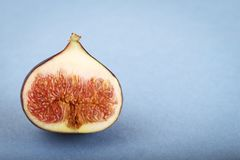 One fig Stock Photography