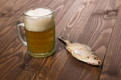 One fish with beer Stock Images
