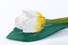 One flower. An isolated of white flower over white background Stock Images