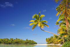 One Foot Island, Cook Islands stock photo