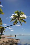 One Foot Island, Cook Islands Royalty Free Stock Photos