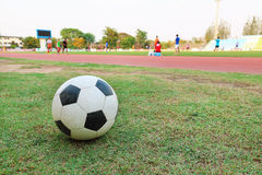 one football on green grass with blur player background Royalty Free Stock Photos