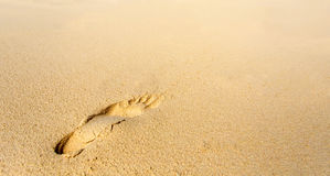 One footprint on the tropical beach Stock Images