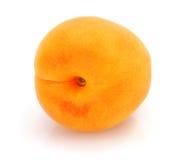One fresh apricot fruits Stock Photo