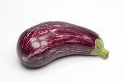 One fresh Aubergine,eggplant   Stock Images