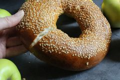 One fresh bagel with sesame seeds. Female hand breaks a bagel. Nearby are fruits - apples and lemons. Delicious and healthy breakfast stock images