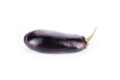 One fresh eggplant isolated on white Stock Image
