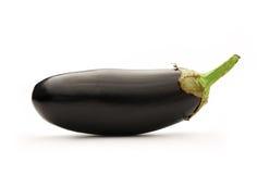 One fresh eggplant Royalty Free Stock Image