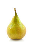One fresh juicy pear Royalty Free Stock Images