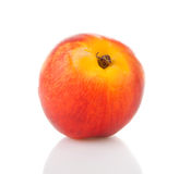 One fresh nectarine in closeup Stock Photography