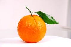 One fresh orange royalty free stock photography