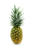 One fresh pineapple Stock Photos