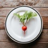 One fresh radish. One ripe radish on plate on wooden background Stock Images
