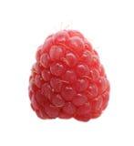 One fresh raspberry. On white background. Shallow depth of field Stock Photo