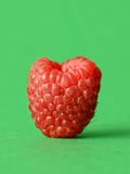 One fresh raspberry. On a green  background Stock Image