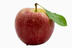 One Fresh Red Apple Royalty Free Stock Photos