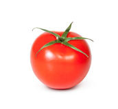 One Fresh Red Tomato Stock Photography