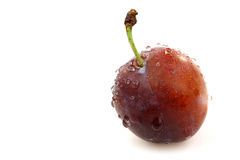 One fresh ripe plum Royalty Free Stock Images