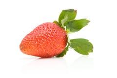 One fresh strawberry Stock Photos