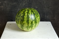 One fresh watermelon on seat Stock Photography