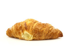 One freshly baked croissant Stock Images