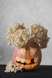 One funny pumpkin for Halloween with flowers on a grey background Royalty Free Stock Photo