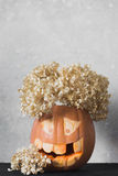 One funny pumpkin for Halloween with flowers on a grey background Stock Photo