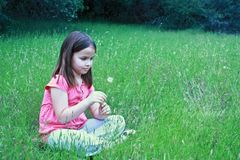 One girl about to blow on dandelion Stock Images