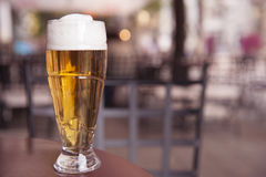 One glass of beer on the table Stock Image
