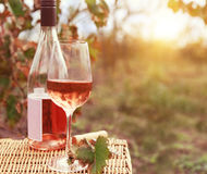 One glass and bottle of the rose wine in autumn vineyard Royalty Free Stock Image