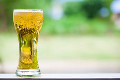 One glass of the light beer Stock Photo