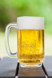 One glass of the light beer Royalty Free Stock Photo
