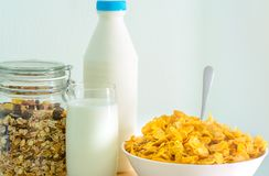 One glass of milk and milk bottle with blank label put on wood table near bowl of cereal with spoon. Calcium food breakfast. For children before go to school in Stock Image