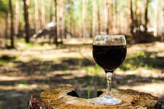 One glass with a red wine on a stump on a background of a summer forest. stock images