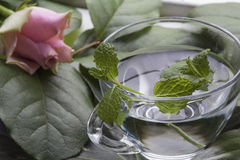 One glass of water with mint on the green leaves and rose. One glass of water with mint on the green leaves and pink rose as background stock photos