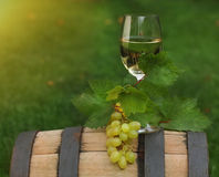 One glass of white wine on the wine barrel Royalty Free Stock Photography