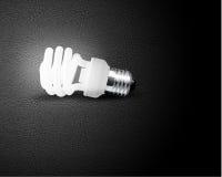 One glowing Light bulb. On black background Stock Image