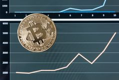 One gold bitcoin coin lies on the charts of the growth of value. Concept of crypto currencies Stock Photo